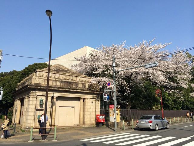 iPhone5sで撮影 春の谷中上野散歩 2014年4月1日