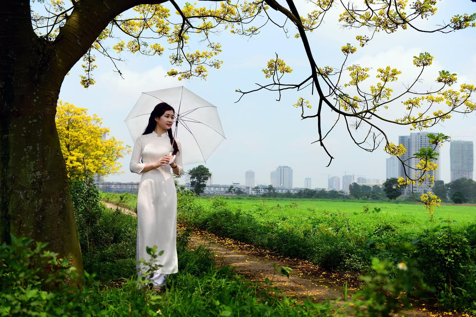 áo dài trắng - Như khúc tình ca