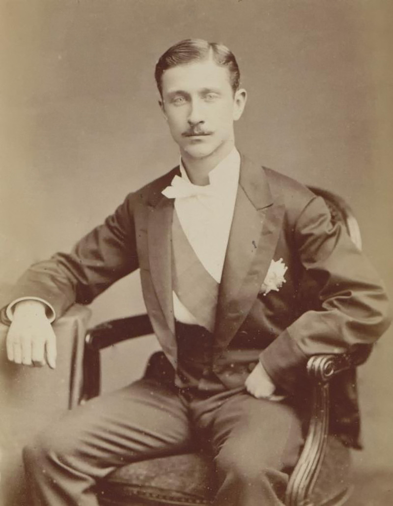 The Imperial Prince Louis Napoleon, 1878