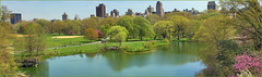 View of Turtle Pond and Central Park from Belvedere Castle New York (NY) April 2016