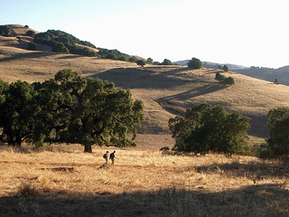 Burdell Hikers by May Chen