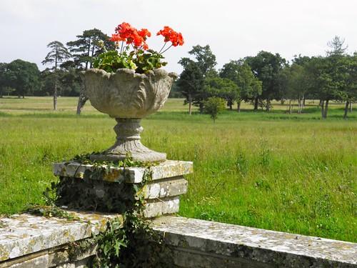 flowers building garden countryside norfolk