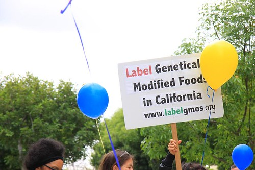GMO Labeling in California