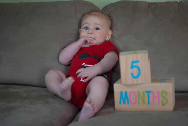 05 months-2
