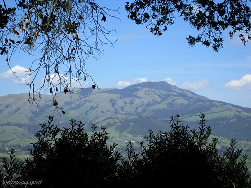 Mount Diablo from San Damiano