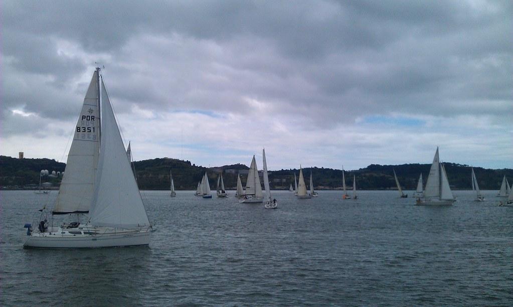 Sail Boats Race