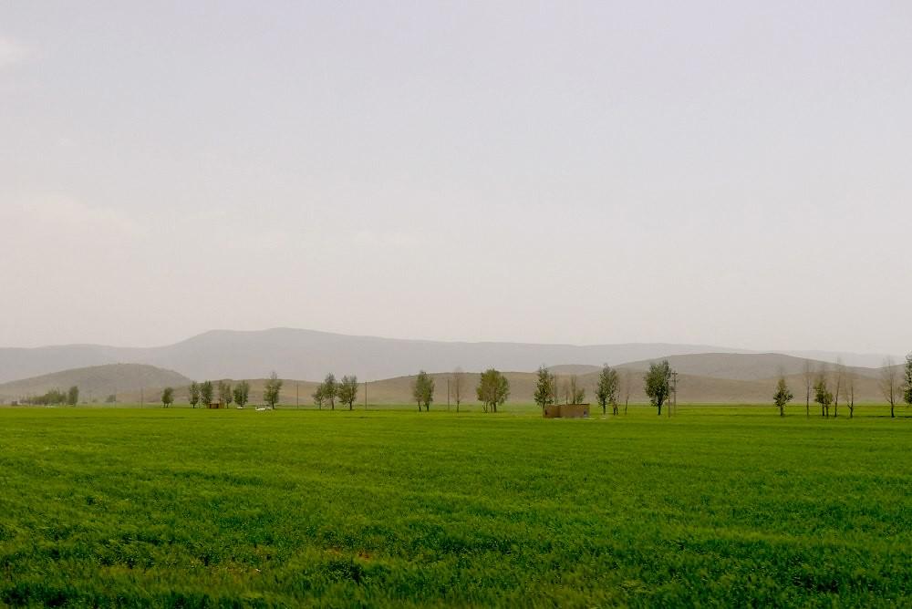 yazd-shiraz-L1030100