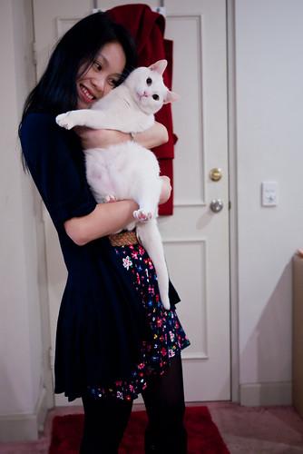 Hug a cat