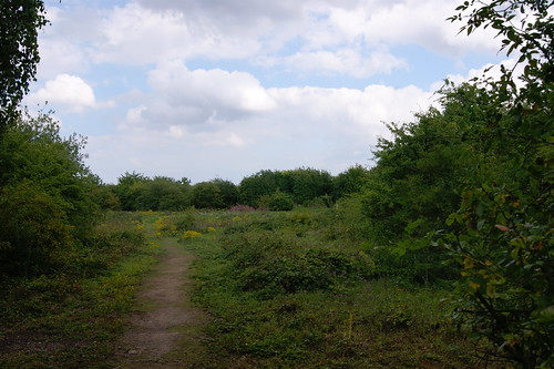 Berengrave Nature Reserve (2)
