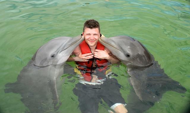anteketborka.blogspot.com, dauphins11