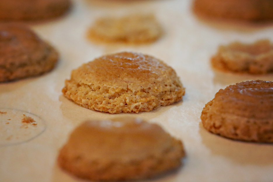 062112_macaronTryouts10