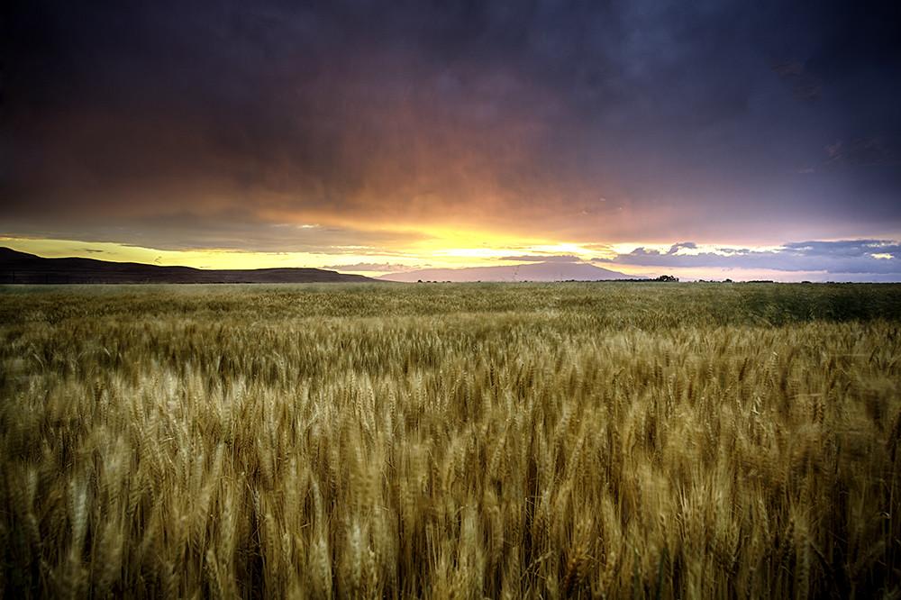 IMAGE: http://farm8.staticflickr.com/7116/7537385634_9fa994df8a_b.jpg