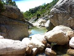 Les obstacles du ruisseau de Carciara