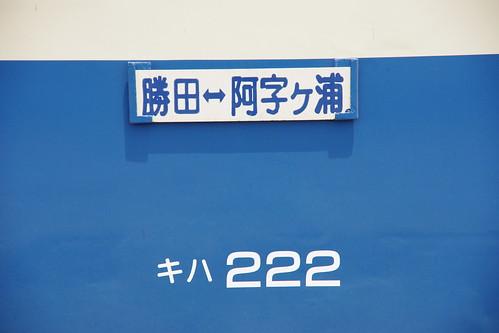IMGP6569