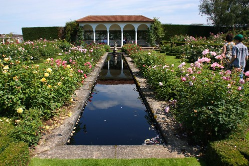 The Renaissance Garden at David Austin Roses