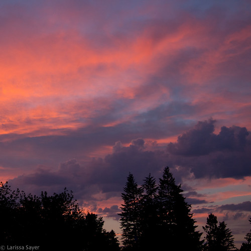 travel pink sunset summer sky canada silhouette clouds purple britishcolumbia eastkootenay canalflats kootenayvalley