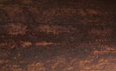 Rust One