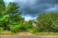 Crumpled house in Yarmouth County through the trees