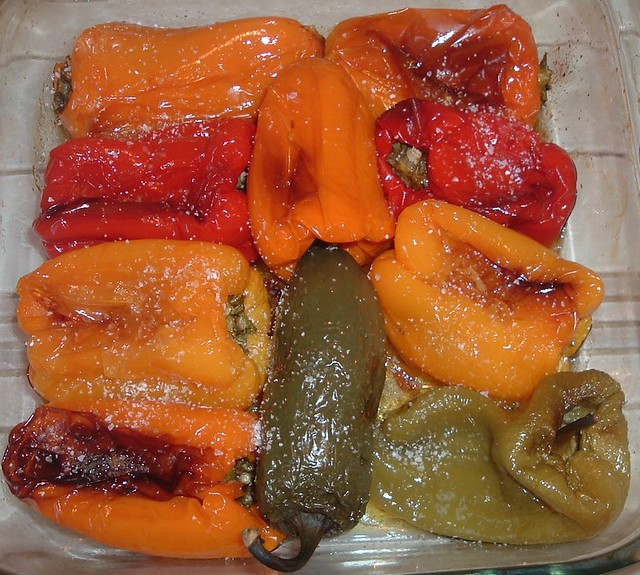 Lunch Colours - Roasted, Fujifilm FinePix A210