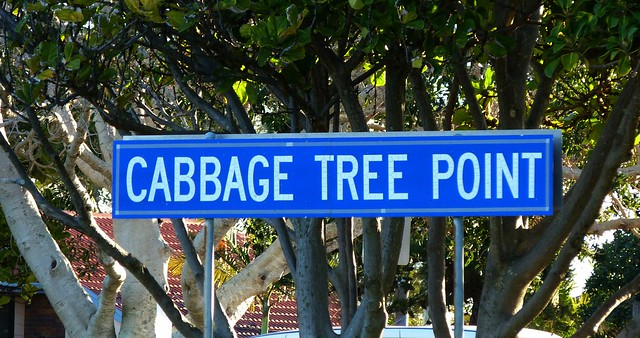 Cabbage Tree Point Sign