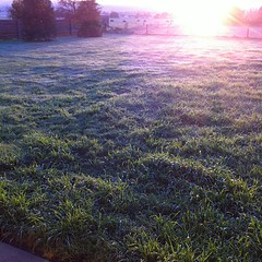 Frosty sunrise @lancefield