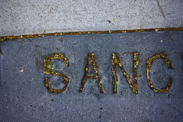 San Francisco Sanchez street sidewalk 1