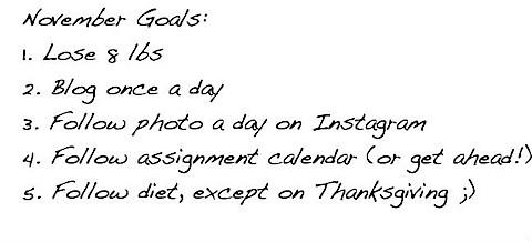 November 2012 goals.jpg