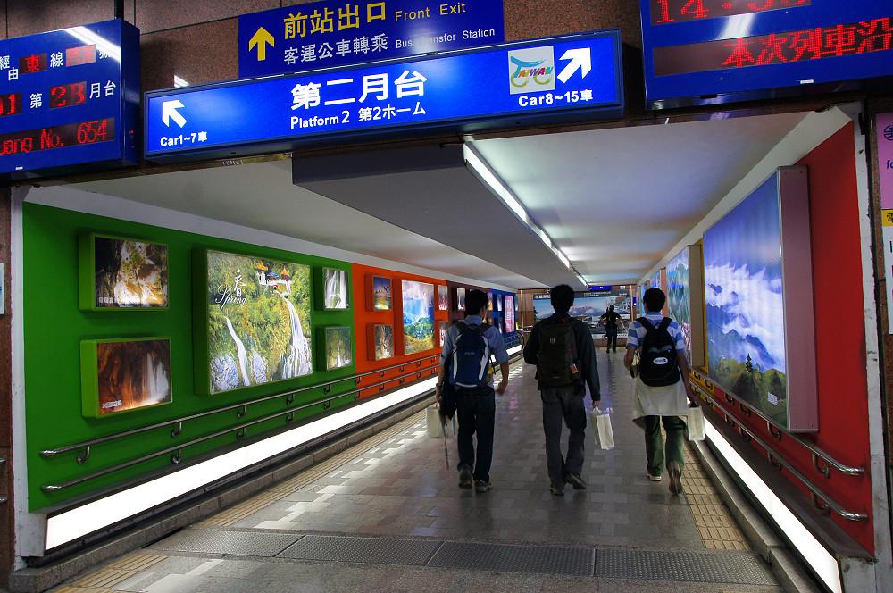 白楊步道-090