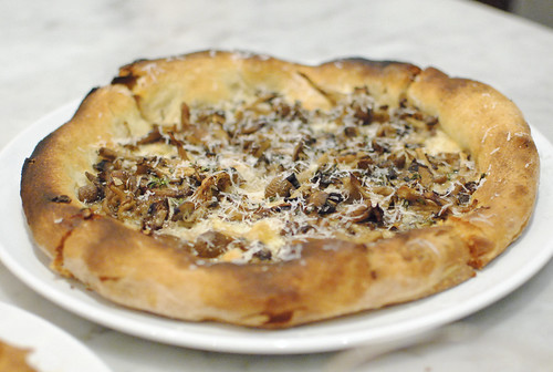 MIXED MUSHROOM fontina, Parmigiano Reggiano, thyme