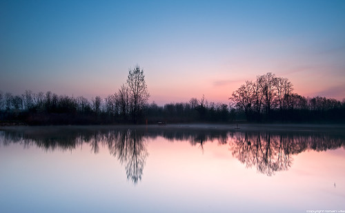 longexposure trees paris france nature water sunrise reflections river landscape nikon eau europe amanecer villa paysage 77 arbre reflets romain brume leverdesoleil fleuve seineetmarne noisiel silouhettes lamarne champssurmarne parcdenoisiel longuepause d700 romainvilla romvi