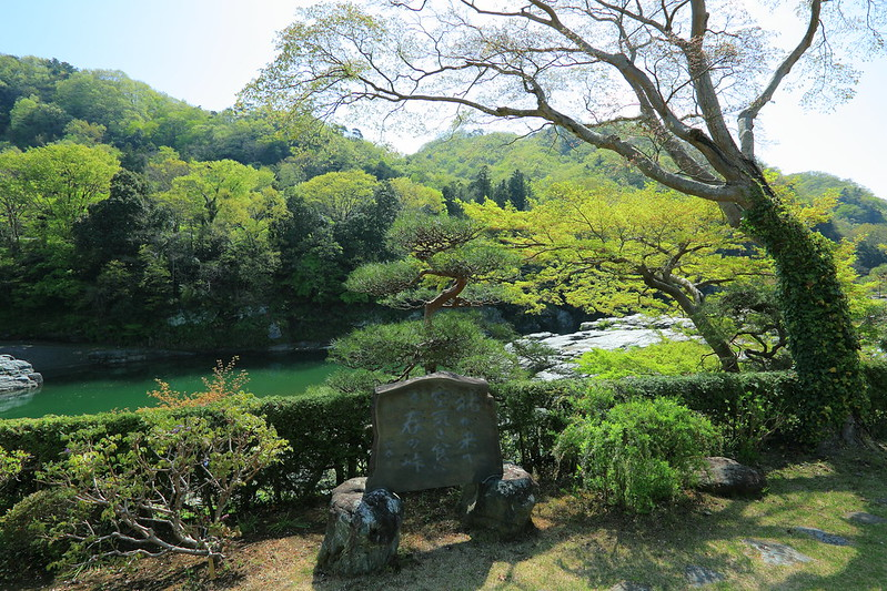 新緑のお庭からの風景
