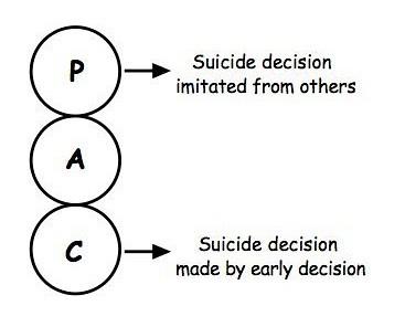 Decision & imitation