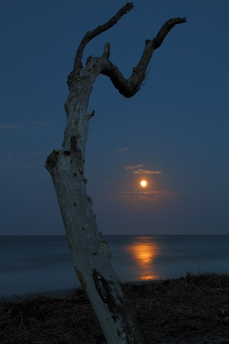 sunset sky moon beach night southcarolina moonrise monte follybeach perigee mdggraphix supermoon lowcountrysunsets