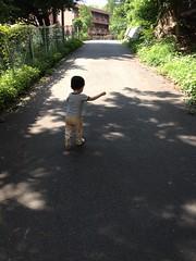 朝散歩 (2012/6/30)