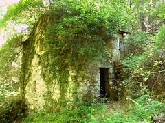 Moulin du ruisseau du Codi