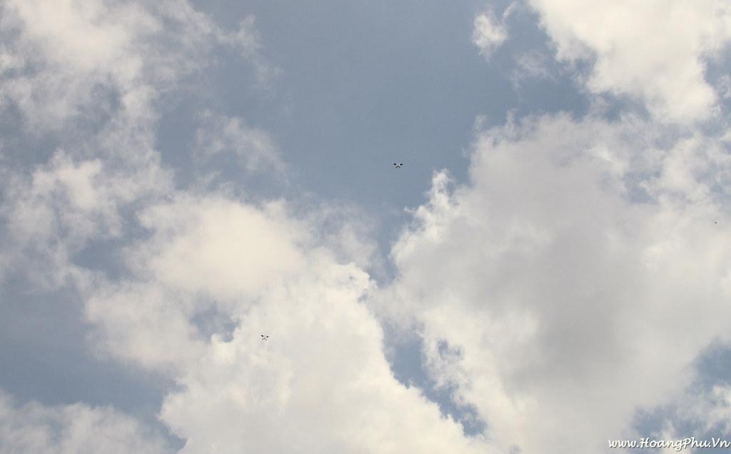 Kites on sky