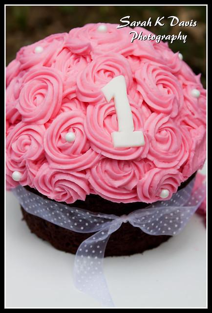 Aliza's Cake