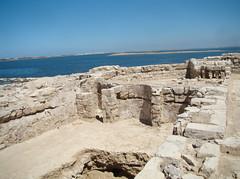 Basilica at Marea (V)