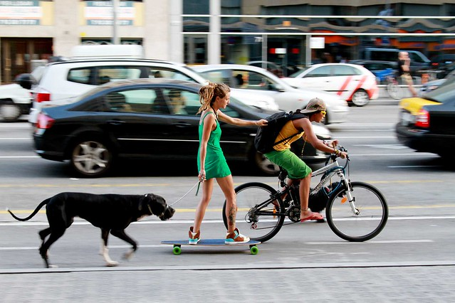 Dog, skateboard & bike
