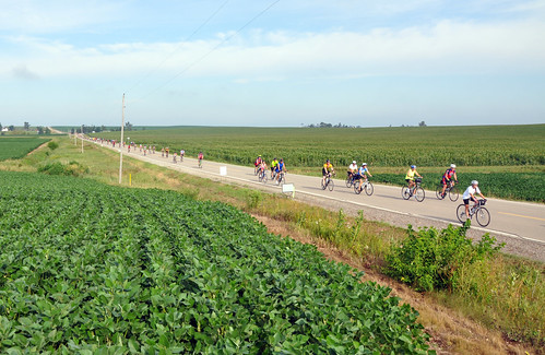 RAGBRAI riders traveling down the road toward the tent site. More than 9,500 people ride RAGBRAI each year.