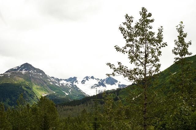 Alaska89 (1 of 1)
