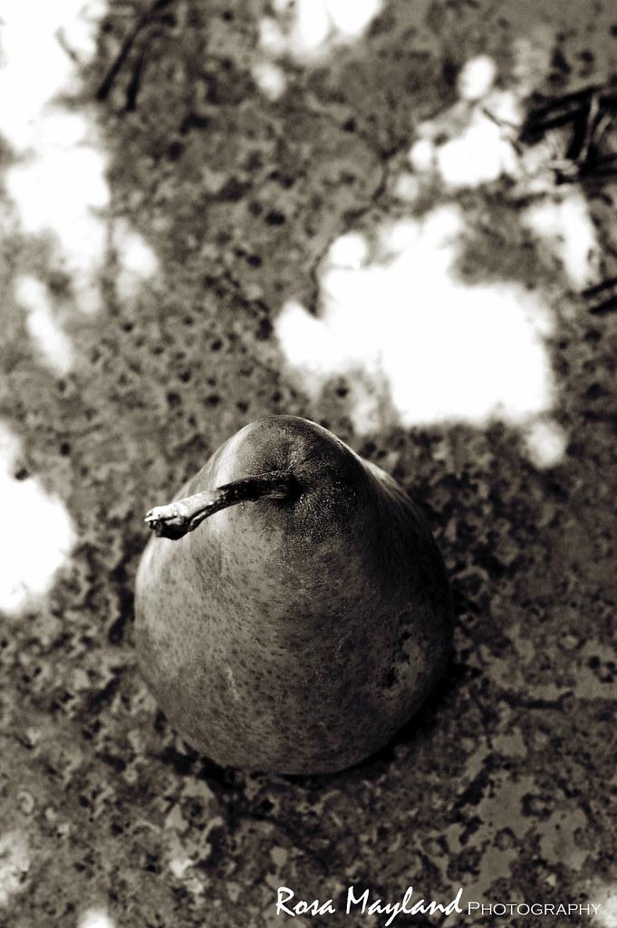 Pear 1 4 bis