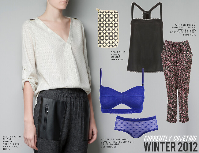 daisybutter - UK Style and Fashion Blog: wishlist, zara, AW12, house of holland, topshop