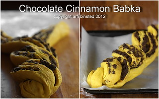 Chocolate Cinnamon Babka-2