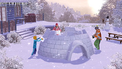 ts3_seasons_winter_igloo