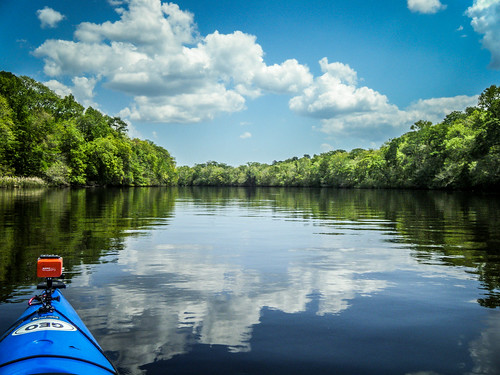 river georgia kayaking swamp paddling lcu ogeecheeriver lowcountryunfiltered