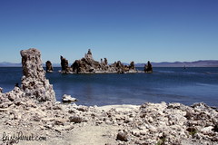 Mono Lake CA (19) Aug 2013_feistyharriet