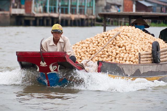 Mekong Delta 47