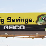 GEICO Big Savings thumbnail