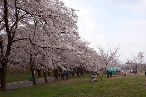 AKG_2012-04-19_033